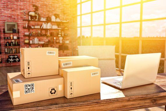 Modules de paiement et de livraison pour un site e-commerce