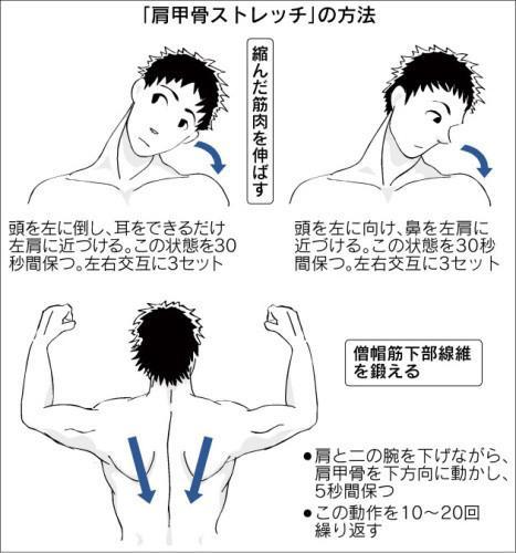 肩こり-ストレッチ-01