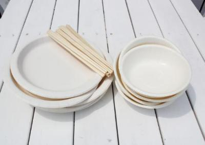 お皿 お箸 BBQ