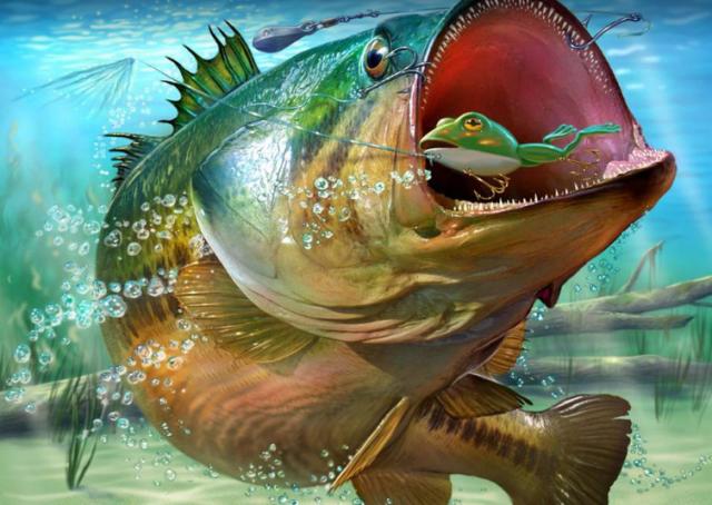 【バス釣り】【フロッグ】で釣る方法、時期、ポイント、タックル、人気おすすめ【ランキング】