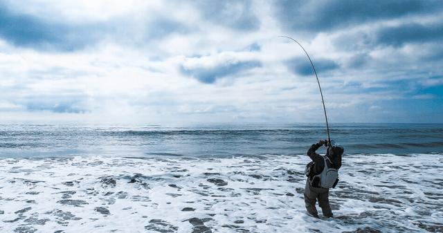 【ルアーでヒラメが釣れる場所(ポイント)】サーフ、河口、漁港・港湾、磯