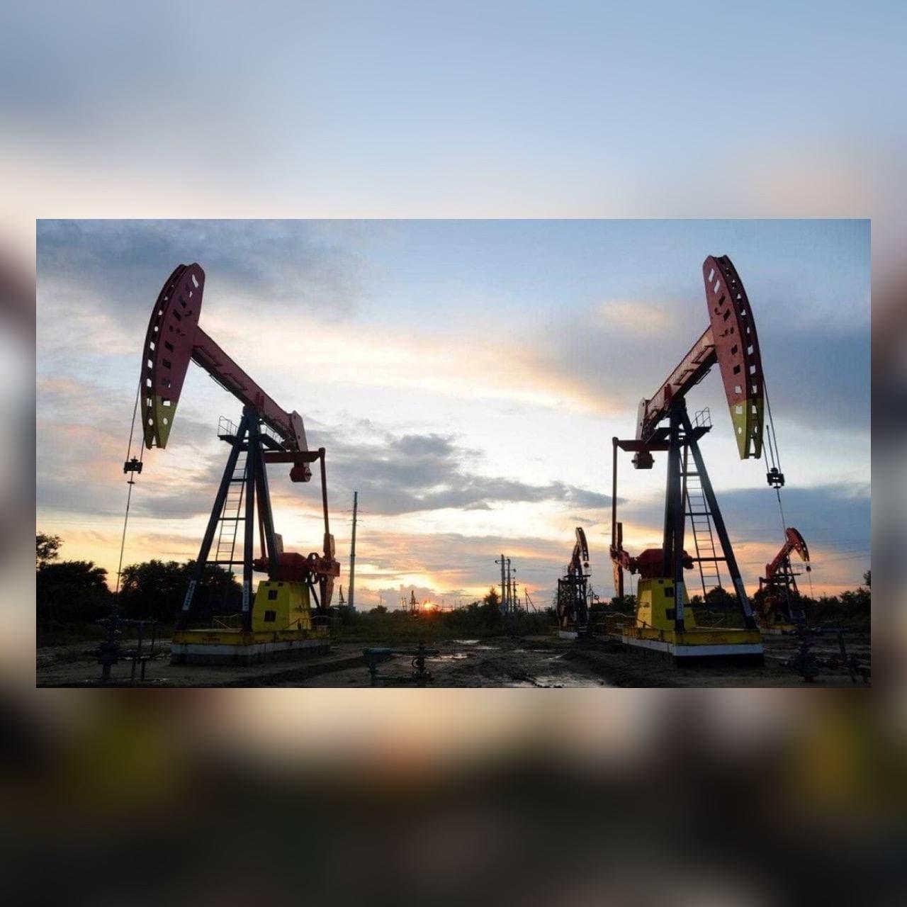 You are currently viewing اسواق النفط بين تقرير منظمة اوبك ووكالة الطاقة الدولية