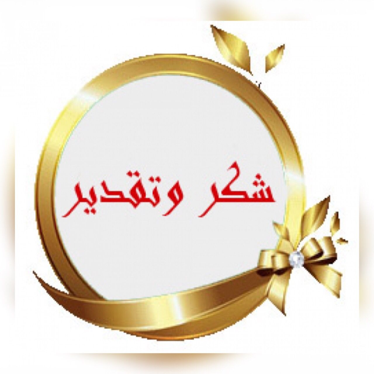 Read more about the article شكر وتقدير