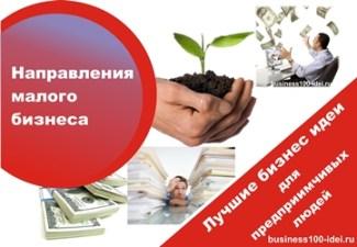 направления для малого бизнеса
