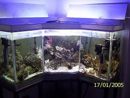 аквариумный бизнес