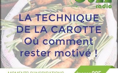 Chronique: La technique de la carotte pour garder votre motivation.