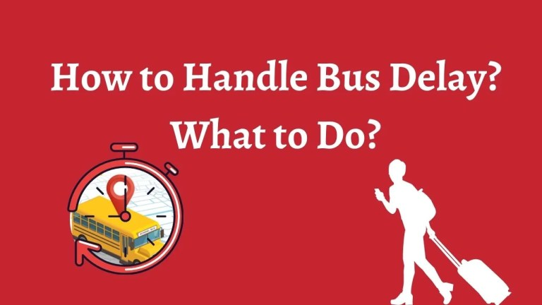 How to Handle Bus Delay?