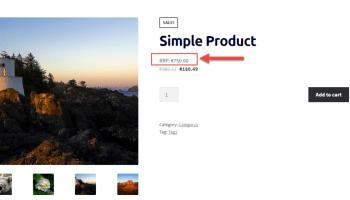 WooCommerce: Display Advanced Custom Fields @ Single Product