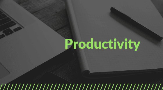 Productivity and Procrastination Business Coaching Journal