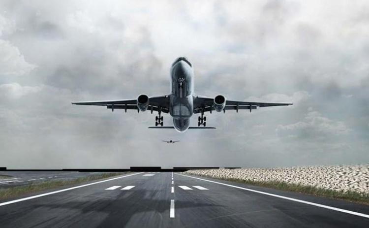 NCAA notifies pilots, operators of new format to report bird strikes - Businessday NG