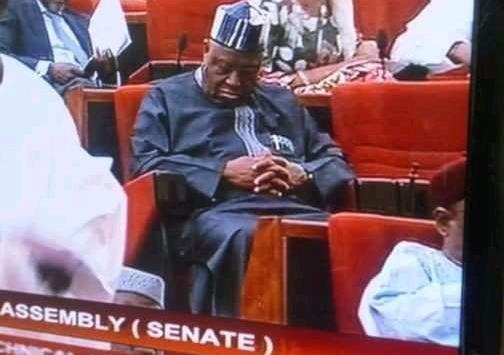 The sleeping senators - Businessday NG