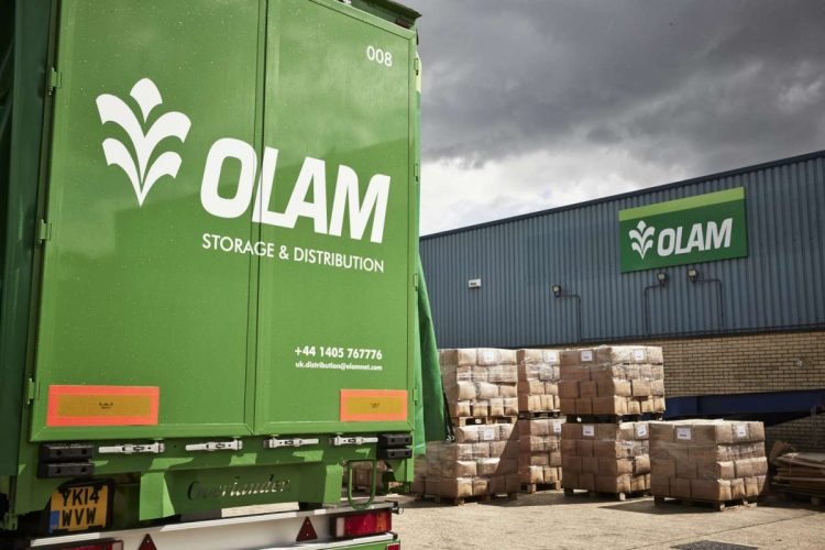 Does Olams acquisition of Dangote Flour mean more M&As? - Businessday NG