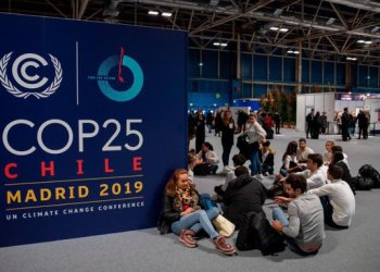 Africa needs business case with opportunities to attract climate change finance - AfDB - Businessday NG