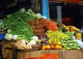 Cashing in on Hydroponics for food security - Businessday NG