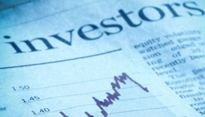 Investors ignore decline in return on equity performance at Custodian Investment - Businessday NG