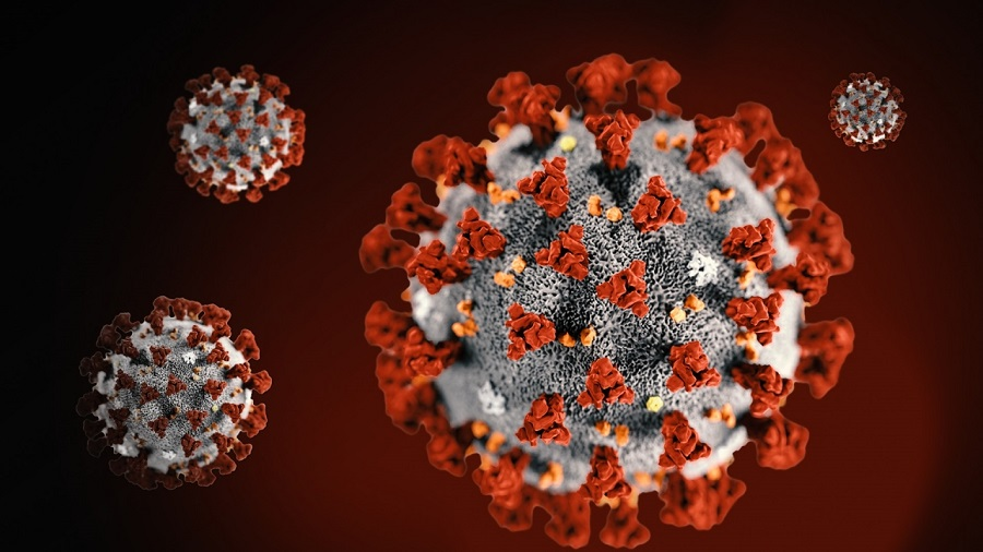 Coronavirus: Time to lockdown Nigeria, says Academy of Science  - Businessday NG