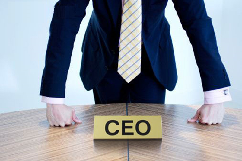 Supporting the CEO through a crisis - Businessday NG