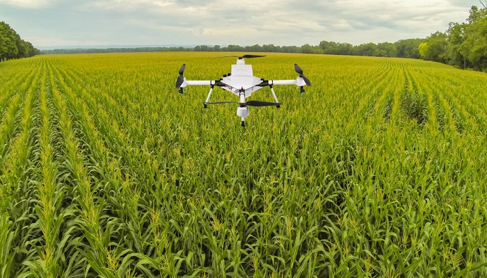Understanding the role of insurance in agritech investments - Businessday NG