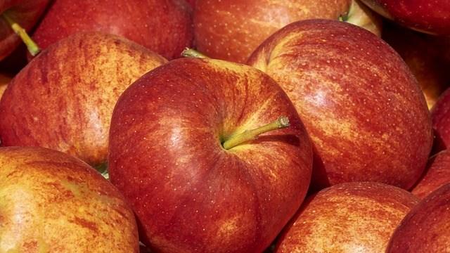 リンゴをむくのにハンマーを使ったら?