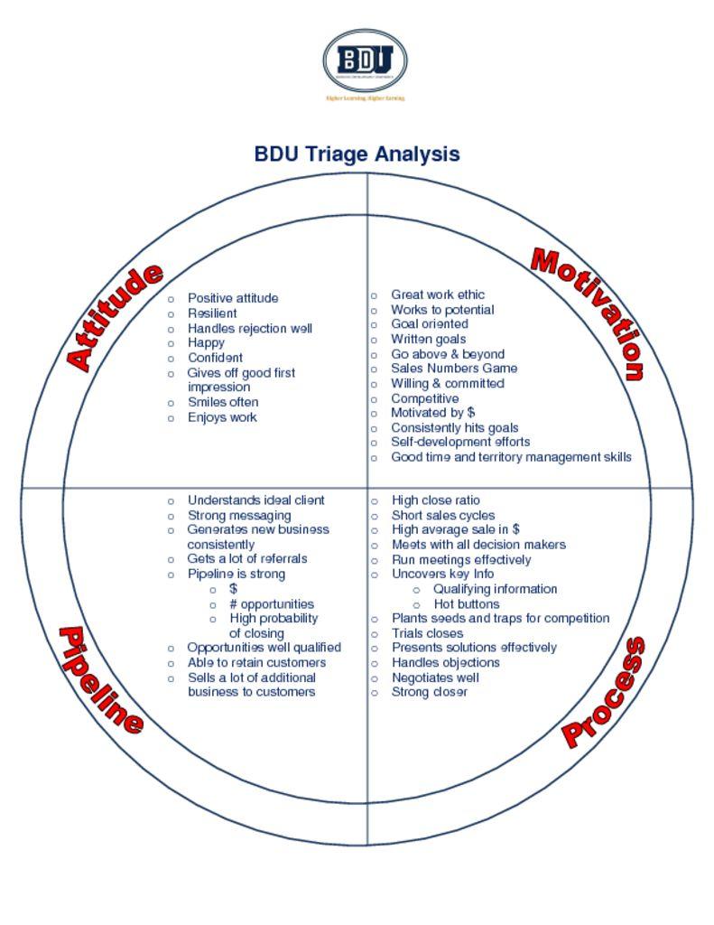 thumbnail of BDU –  Sales Triage Analysis Visual PDF
