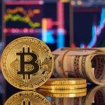 Bitcoin graph cash - Bitcoin: The Return of Volume