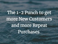 1 2 punch more customers - The 1-2 punch to get more new customers and more repeat purchases