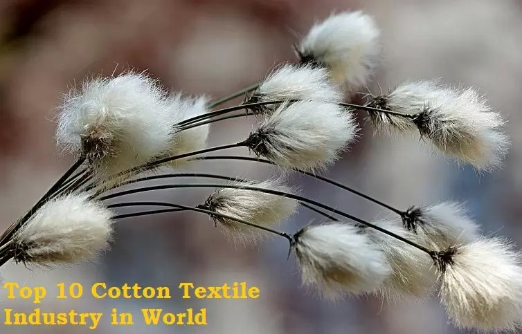 Top 10 Largest Cotton Textile Industry in World - [Cotton Types]