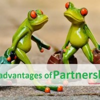 14+ Disadvantages of Partnership Business | Firm - Beware