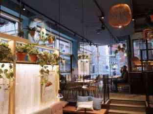 Beautiful Coffee Café for sale in Dubai