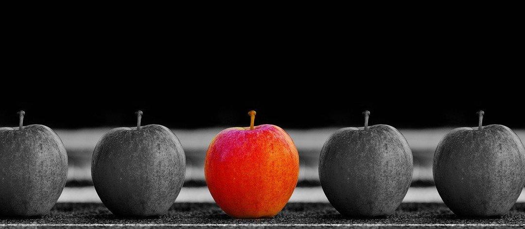 #BusinessFitness,#Leadership,#Product,#Focus