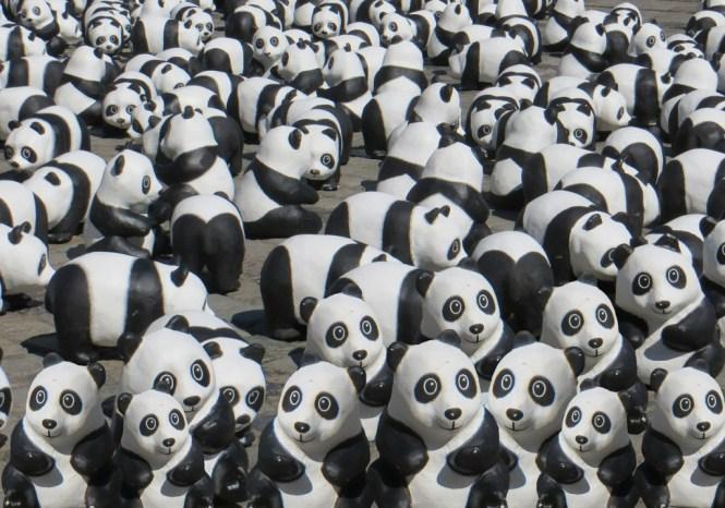 Das Google Panda Update ist ausgerollt