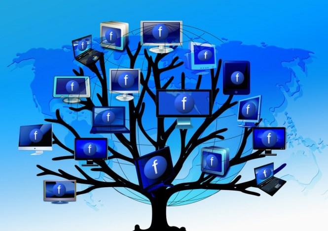 Facebook wächst und wächst