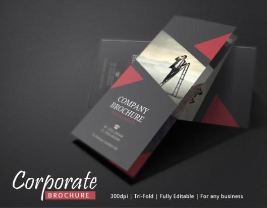 Brochure Design Newsletter Ideas