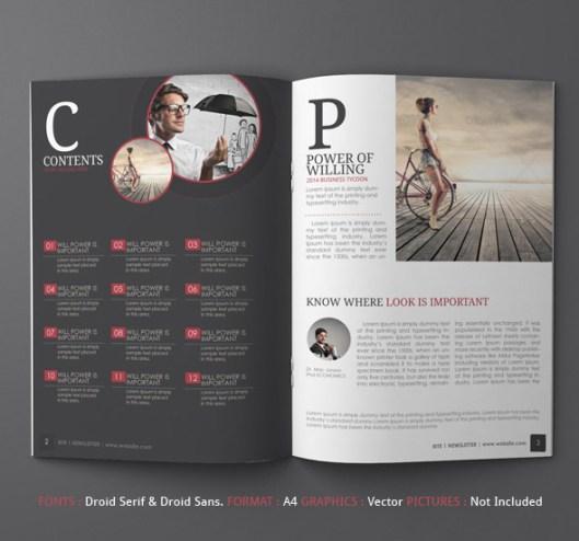 Newsletter Ideas Print Design – Newsletter Examples