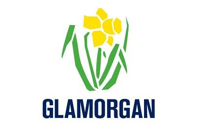 Barry O'Brien Steps Down as Glamorgan Chairman