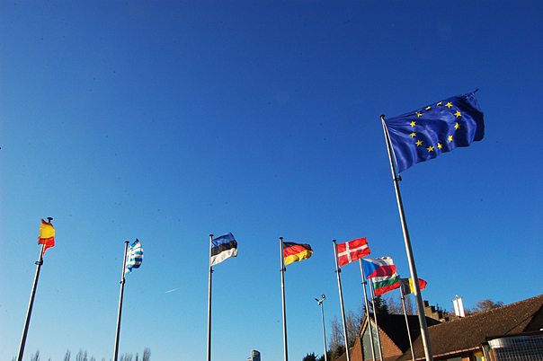 Brexit Summit Gives Denbighshire Businesses Tips on Exporting