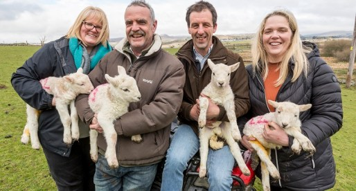 New Family Meat Business Saves Snowdonia Abattoir