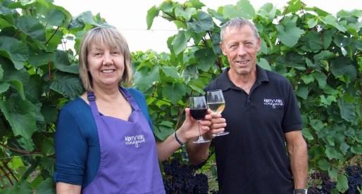 Welsh Vineyard Set for a Bumper Vintage