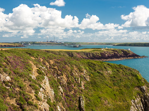 Celebrate the Year of the Sea in Style with Unique Pembrokeshire Boat Trip