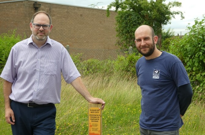 MWL Systems Discovers Rare Orchids on its Land