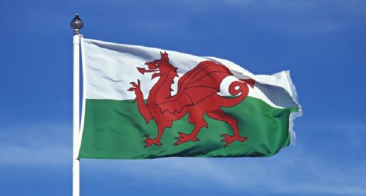Cricket Wales Backs Initiative for Welsh Language in Sport