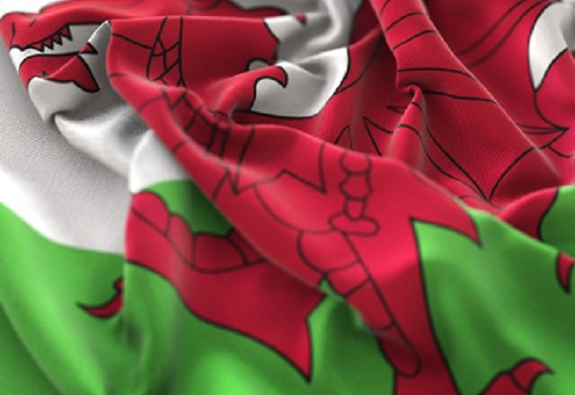 Support Available for Organisations Preparing to Comply with Welsh Language Standards
