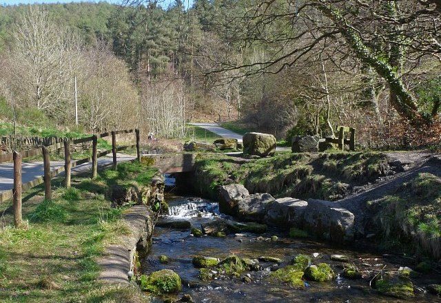Cwmcarn Forest Re-opens the Popular Twrch Trail in Time for Summer