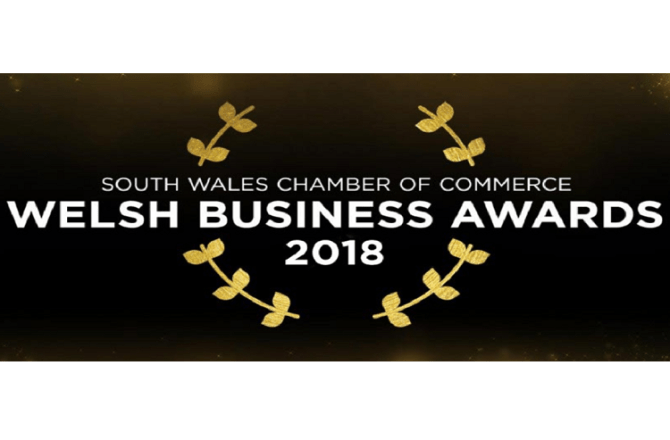 <strong> 21st February – Cardiff </strong><br>The Welsh Business Awards Gala Dinner