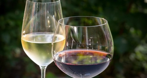 Mid Wales Restaurant is Named UK's Top Spot for Wine