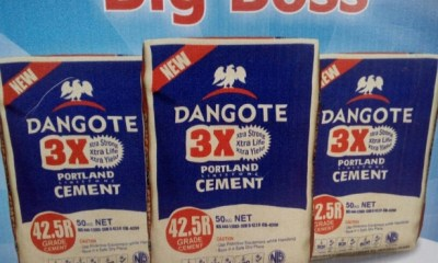 Dangote Cement, 19 Others Inspire Stock Market's N113b Gain