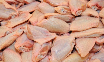 Hong Kong Bans Poultry Meat from Egypt, Poland, Ukraine