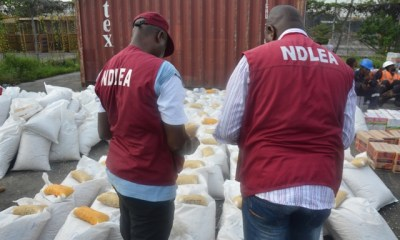 NDLEA Arrests 34,499 Persons over Drugs