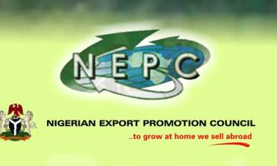 FG Reduces Import, Export Documents