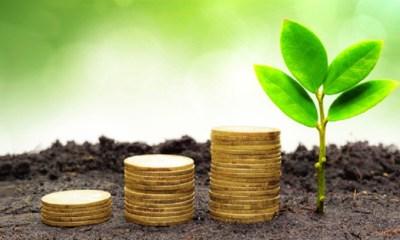 Investors Stake N33bn on Nigeria's N15bn Green Bonds